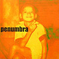 PENUMBRA - BEAR ARMS